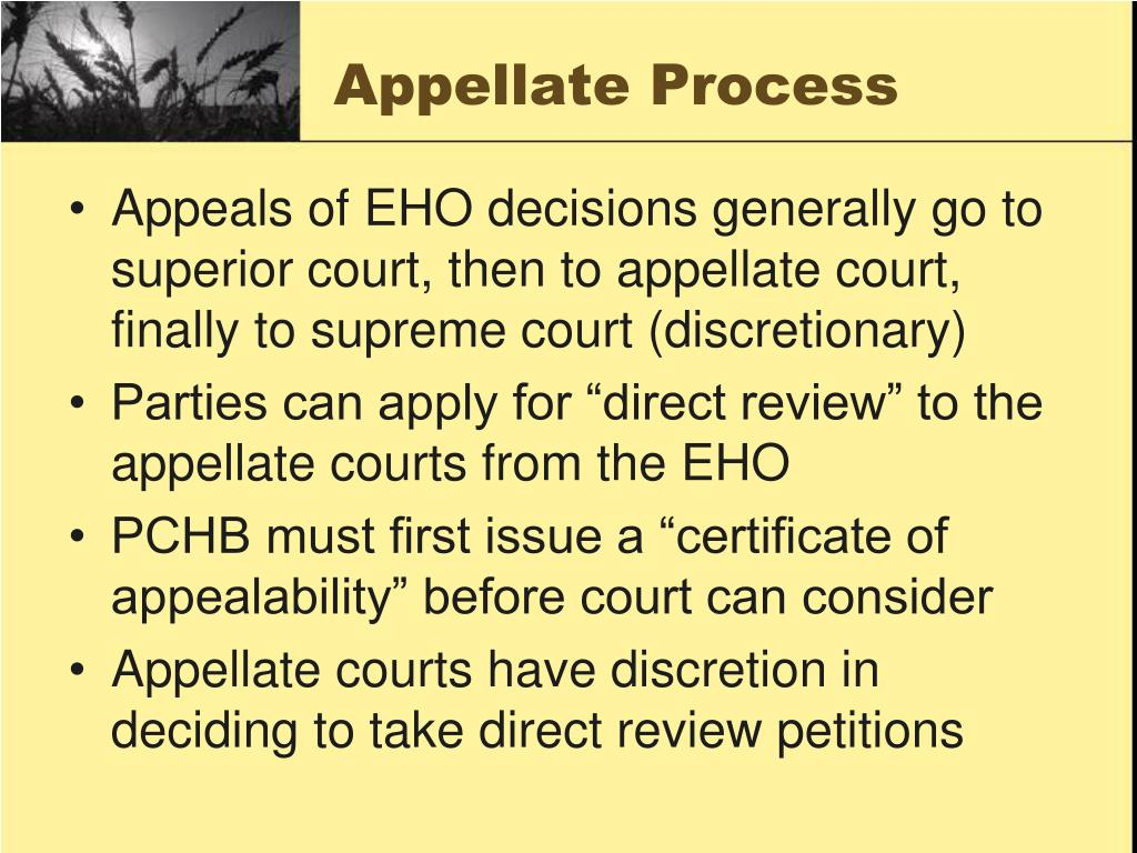 Appellate Process