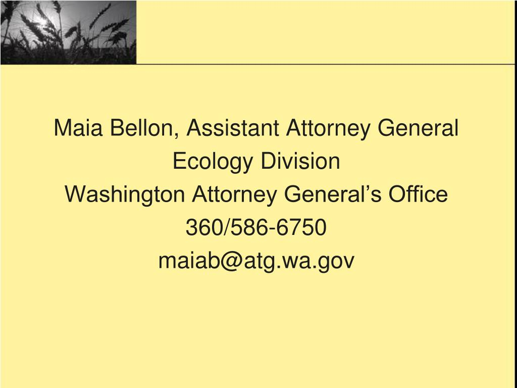 Maia Bellon, Assistant Attorney General