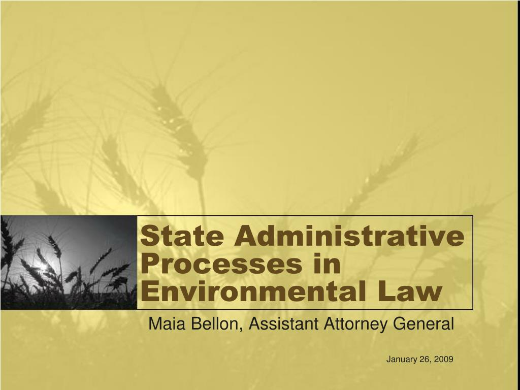 State Administrative Processes in Environmental Law