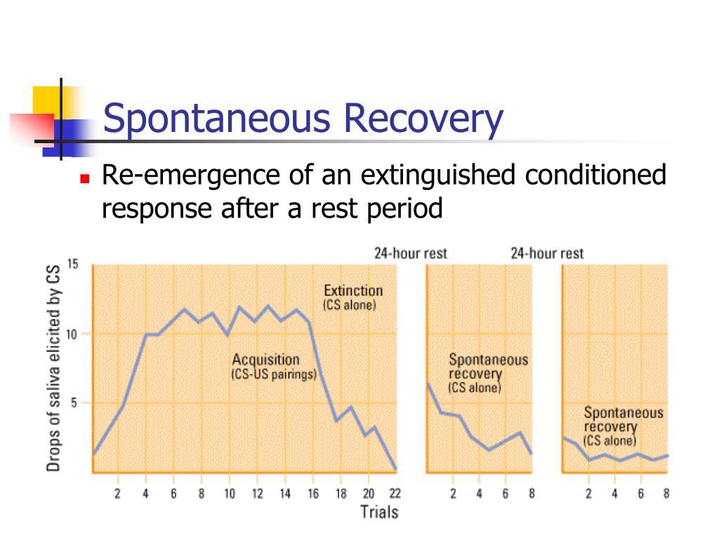 Spontaneous Recovery