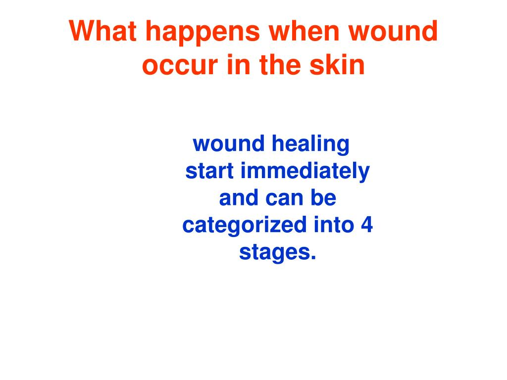 What happens when wound occur in the skin