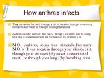 how anthrax infects21