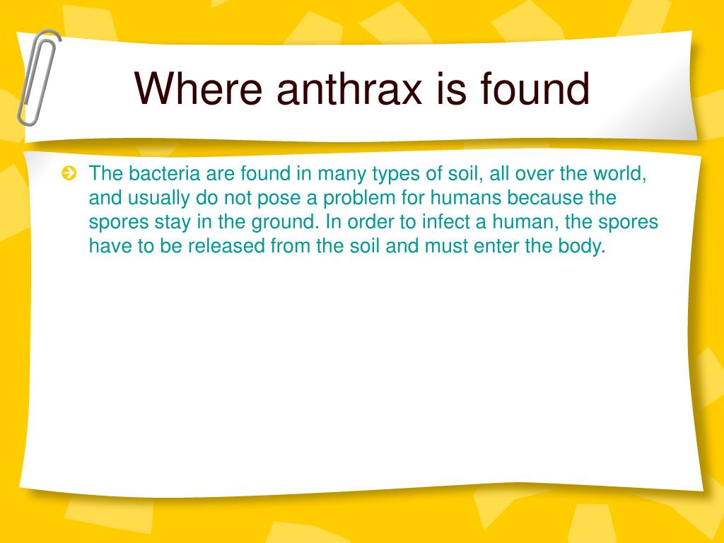 Where anthrax is found