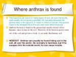 where anthrax is found18
