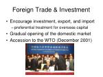 foreign trade investment