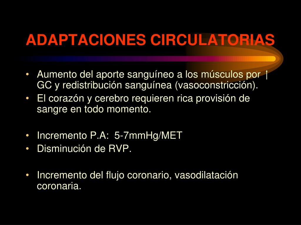 ADAPTACIONES CIRCULATORIAS