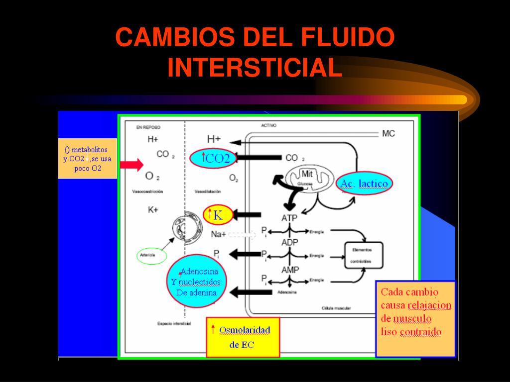 CAMBIOS DEL FLUIDO INTERSTICIAL