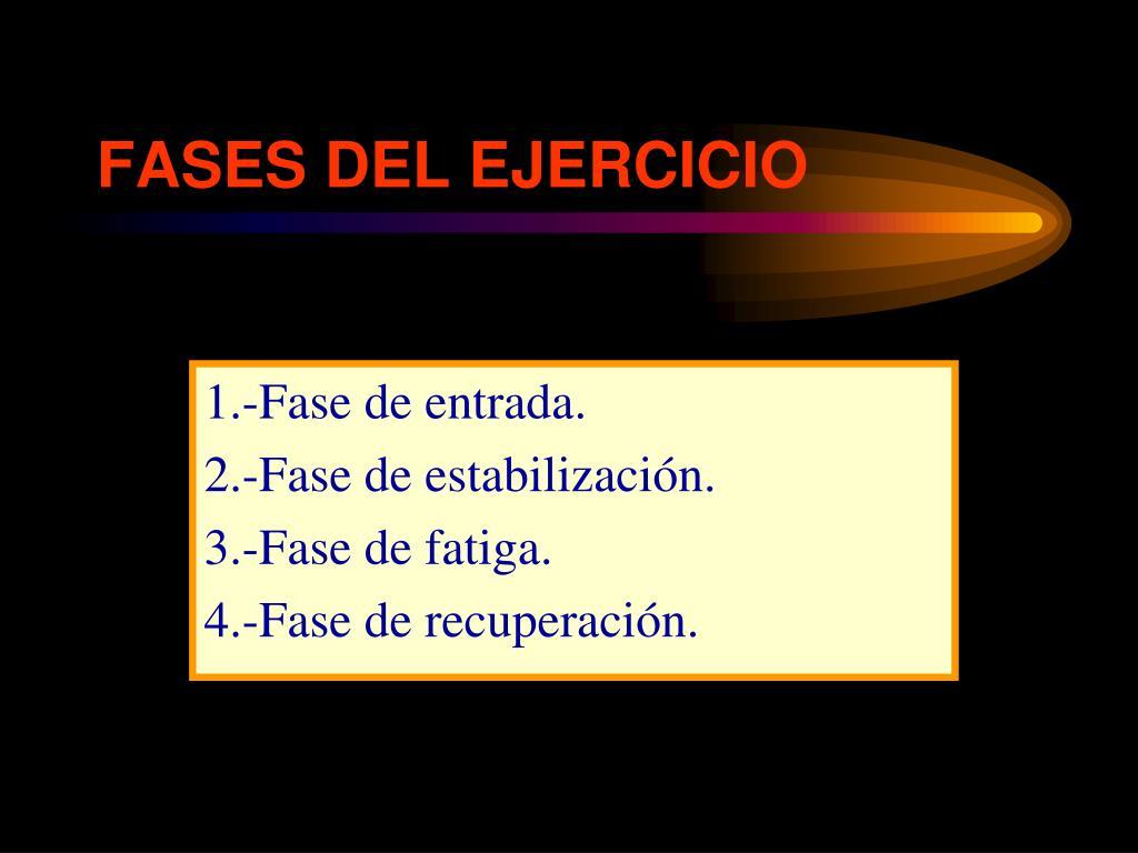 FASES DEL EJERCICIO