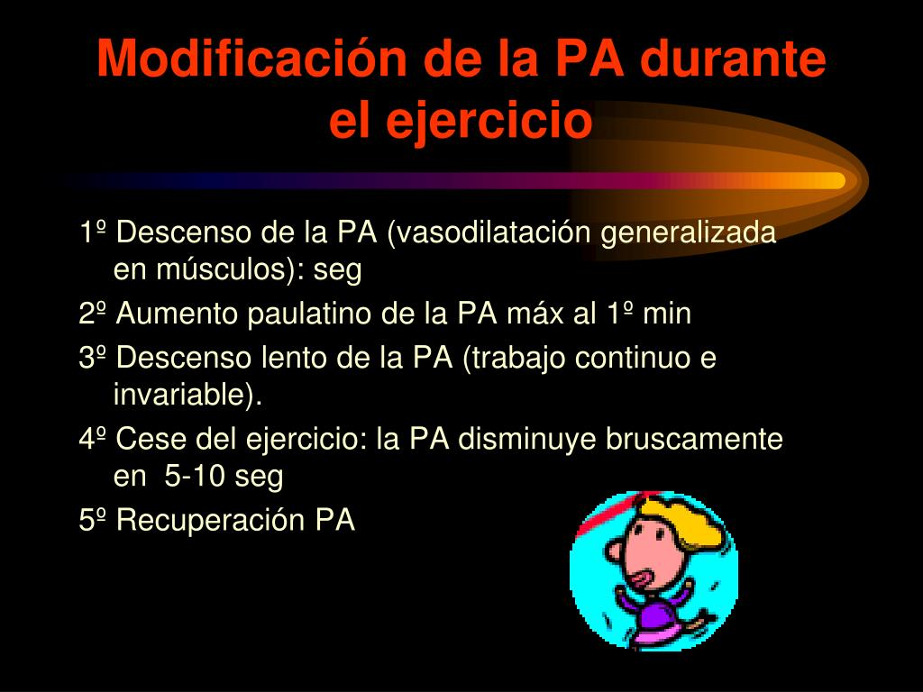Modificación de la PA durante el ejercicio