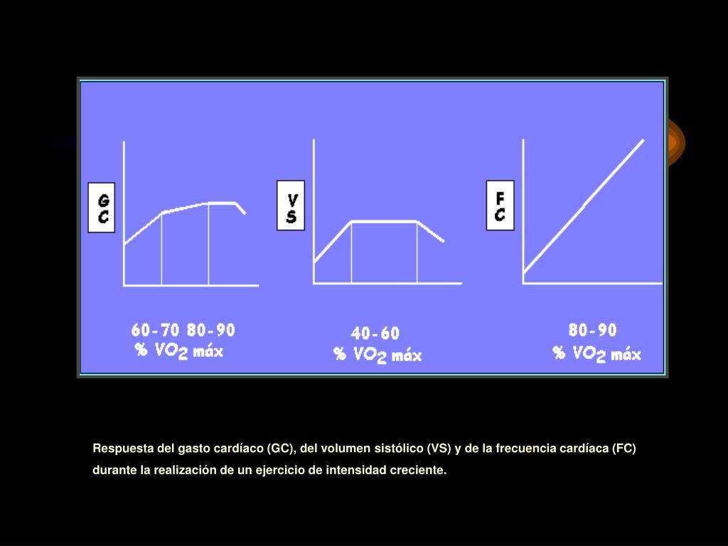 Respuesta del gasto cardíaco (GC), del volumen sistólico (VS) y de la frecuencia cardíaca (FC)