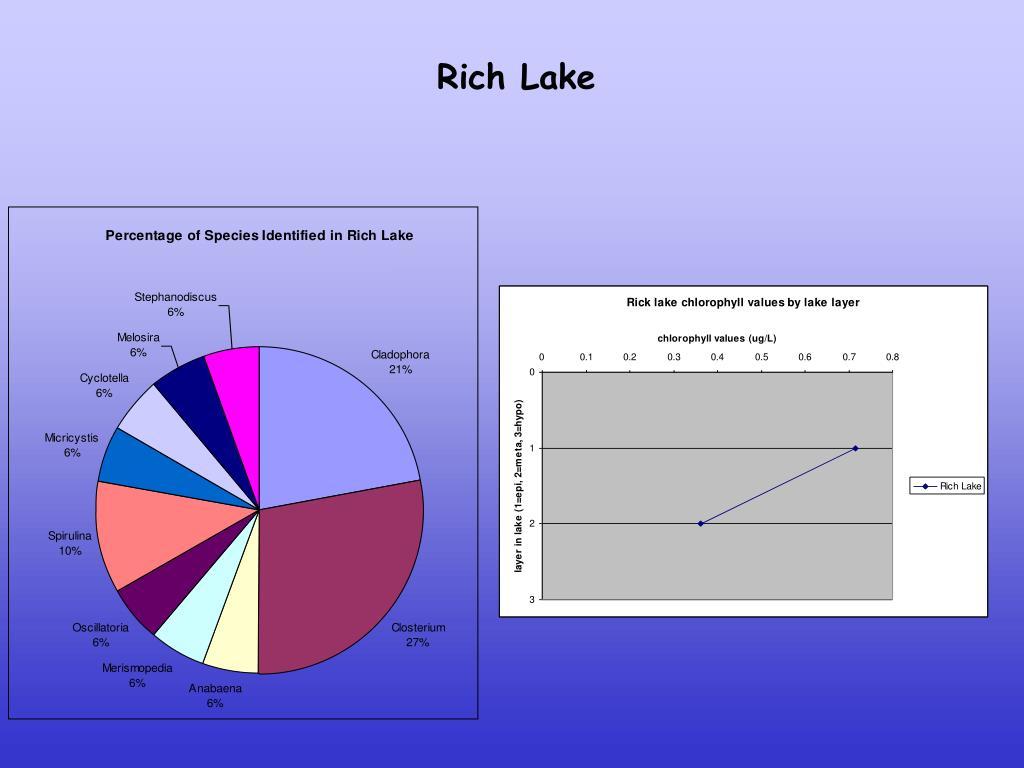 Rich Lake