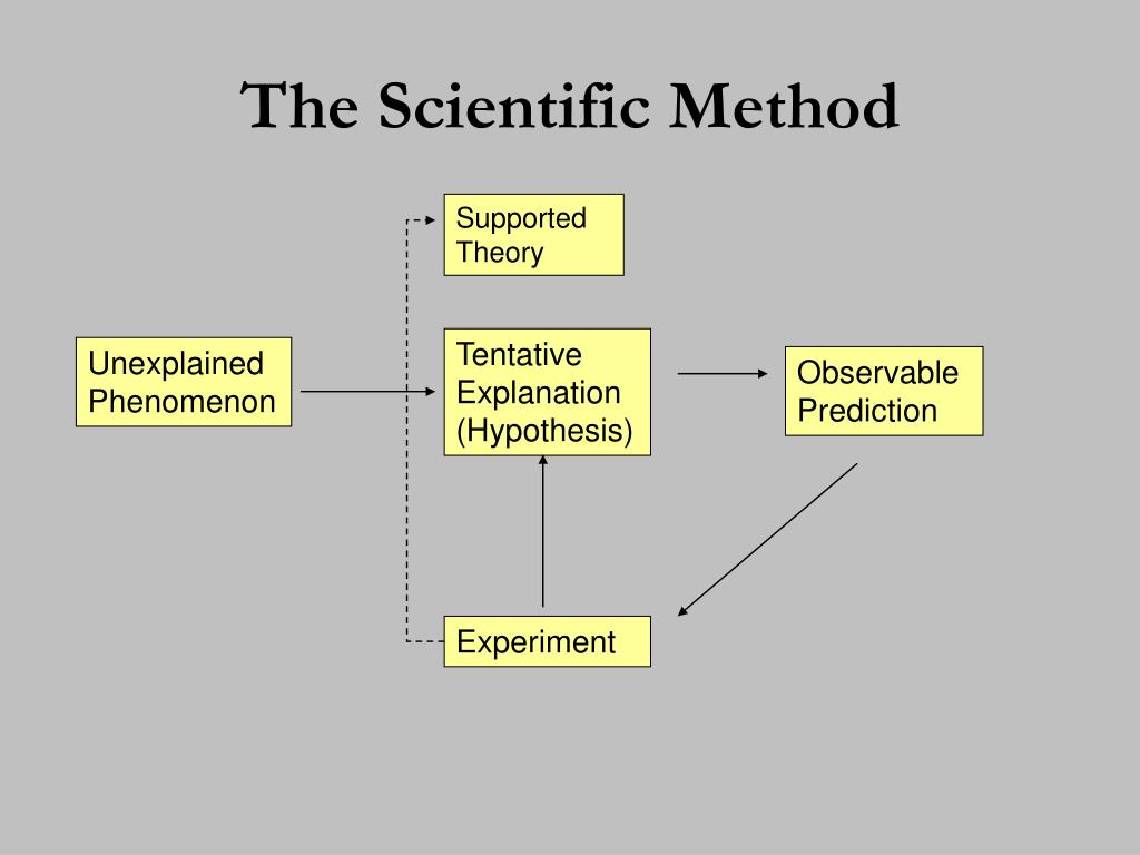 characteristics of social science research A probability sampling method is any method of to the characteristics you are methods that can be used in a wide range of social research.