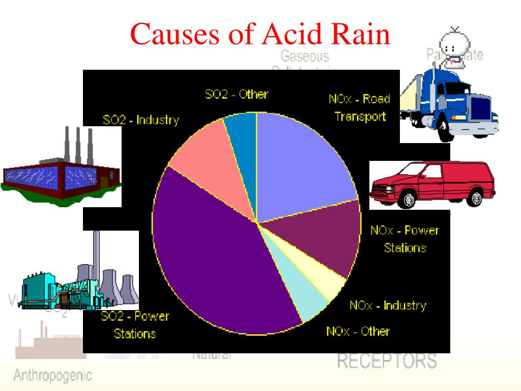 an analysis of acid rain and its causes Acid rain refers to a mixture of deposited material, both wet and dry, coming from the atmosphere containing more than normal amounts of nitric and sulfuric acids erupting volcanoes contains some chemicals that can cause acid rain apart from this, burning of fossil fuels, running of factories and.
