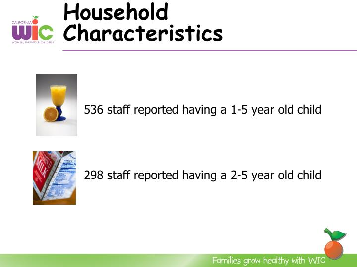 Household Characteristics