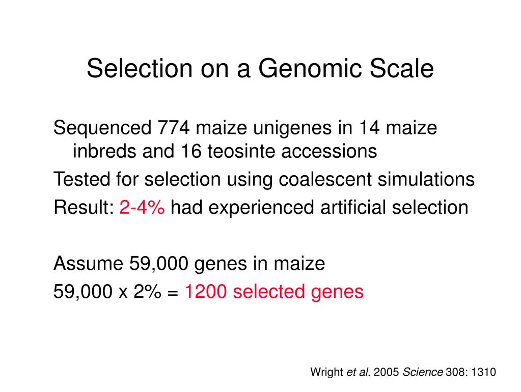 Selection on a Genomic Scale