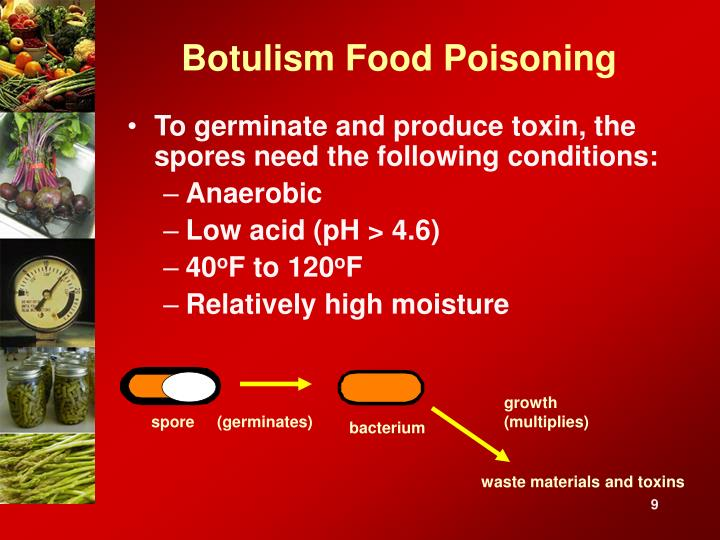 Botulism Food Poisoning