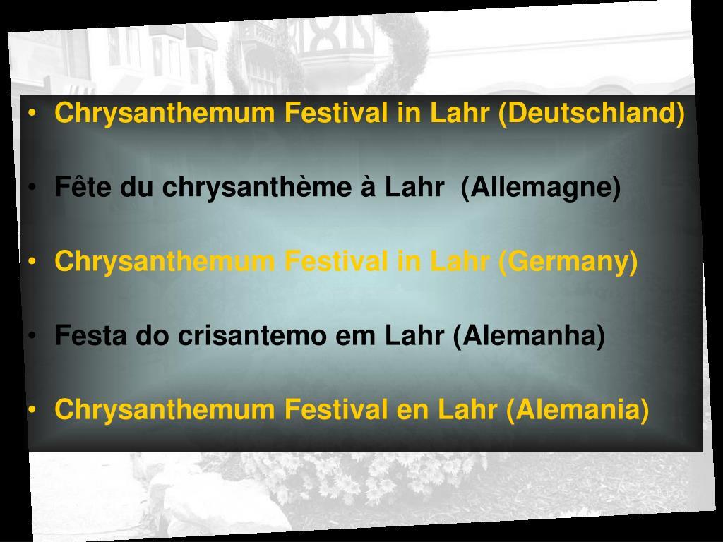 Chrysanthemum Festival in Lahr (Deutschland)
