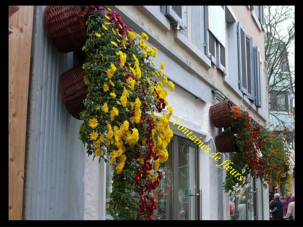 Fontaines de fleurs