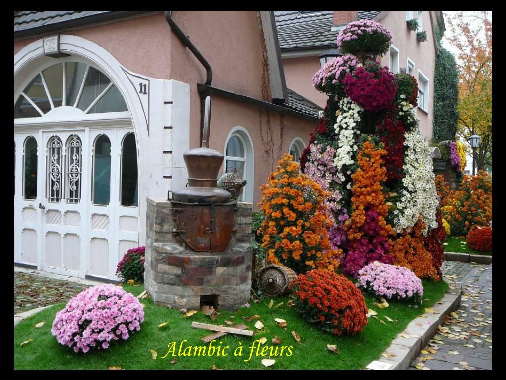 Alambic à fleurs
