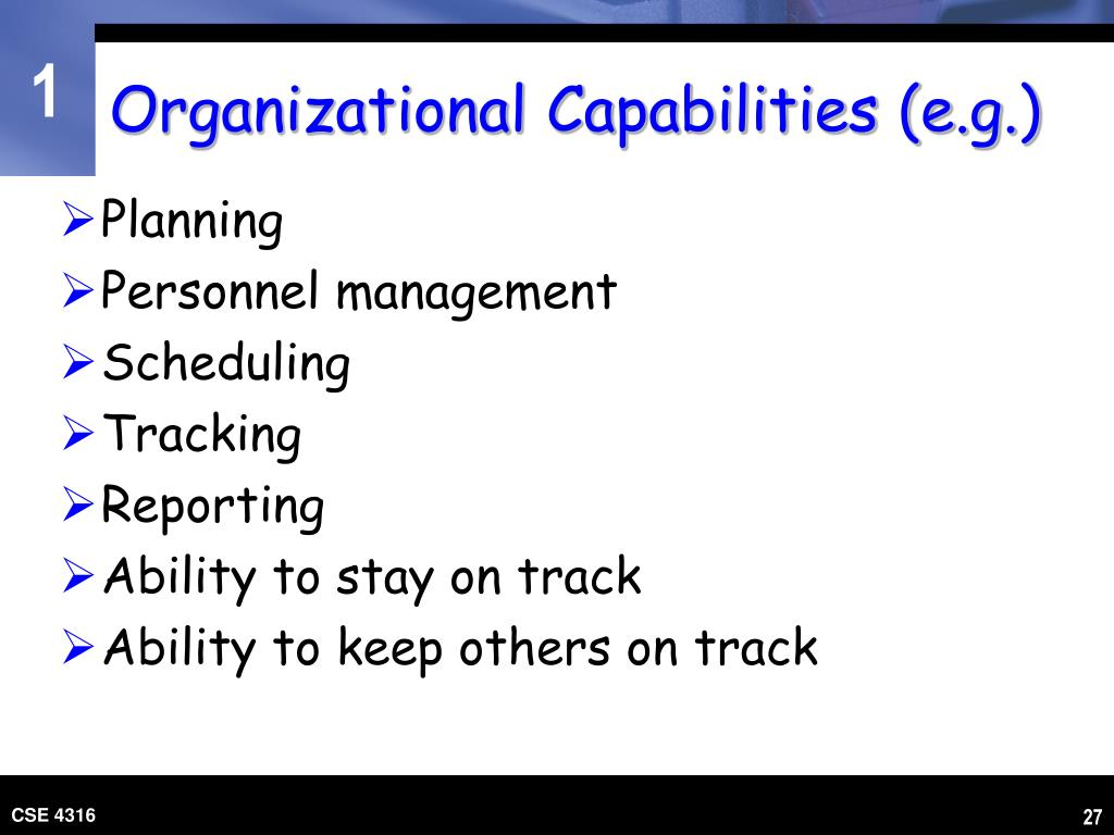 Organizational Capabilities (e.g.)