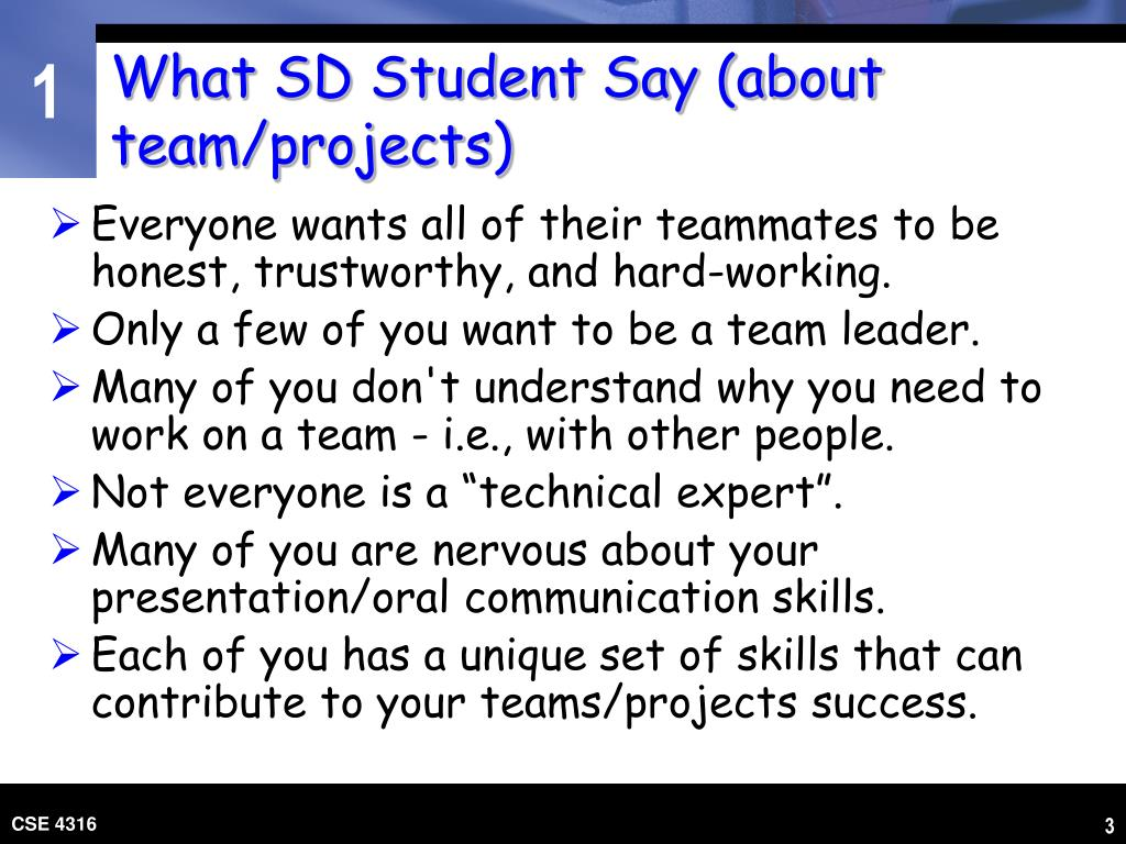 What SD Student Say (about team/projects)