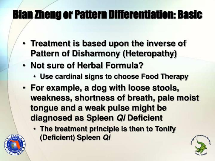 Bian Zheng or Pattern Differentiation: Basic