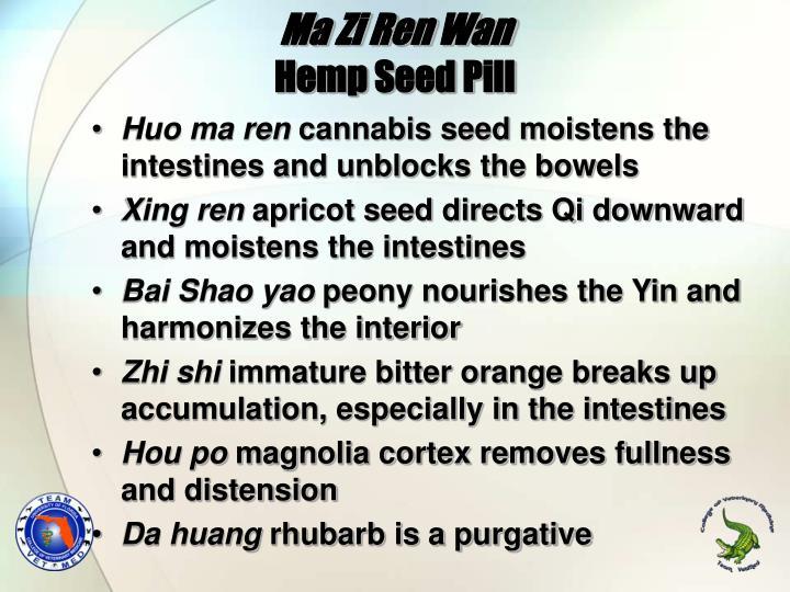 Ma Zi Ren Wan