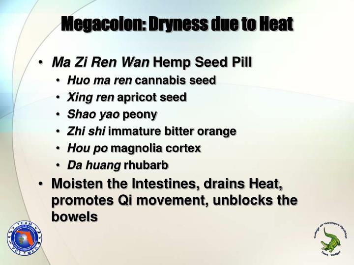 Megacolon: Dryness due to Heat