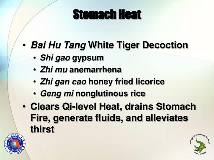 Stomach Heat