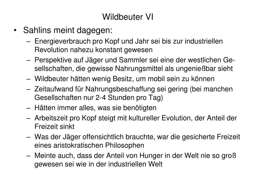 Wildbeuter VI