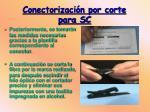 conectorizaci n por corte para sc10