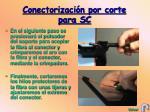 conectorizaci n por corte para sc12