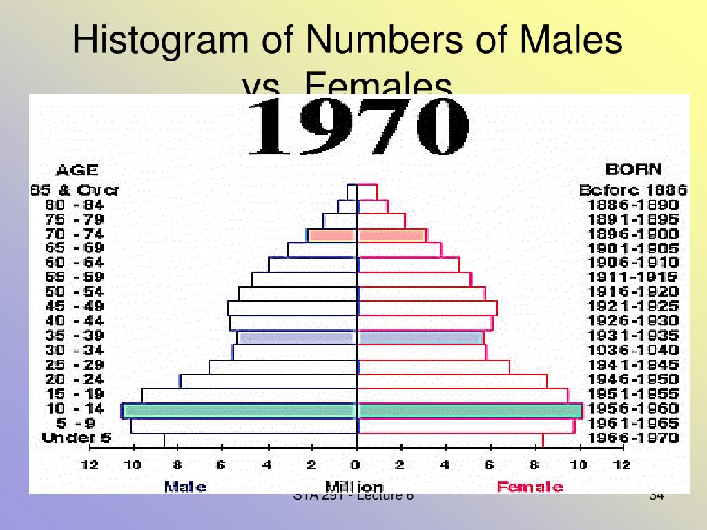 Histogram of Numbers of Males vs. Females