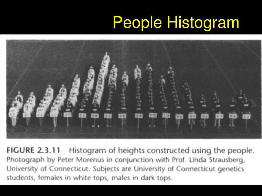 People Histogram