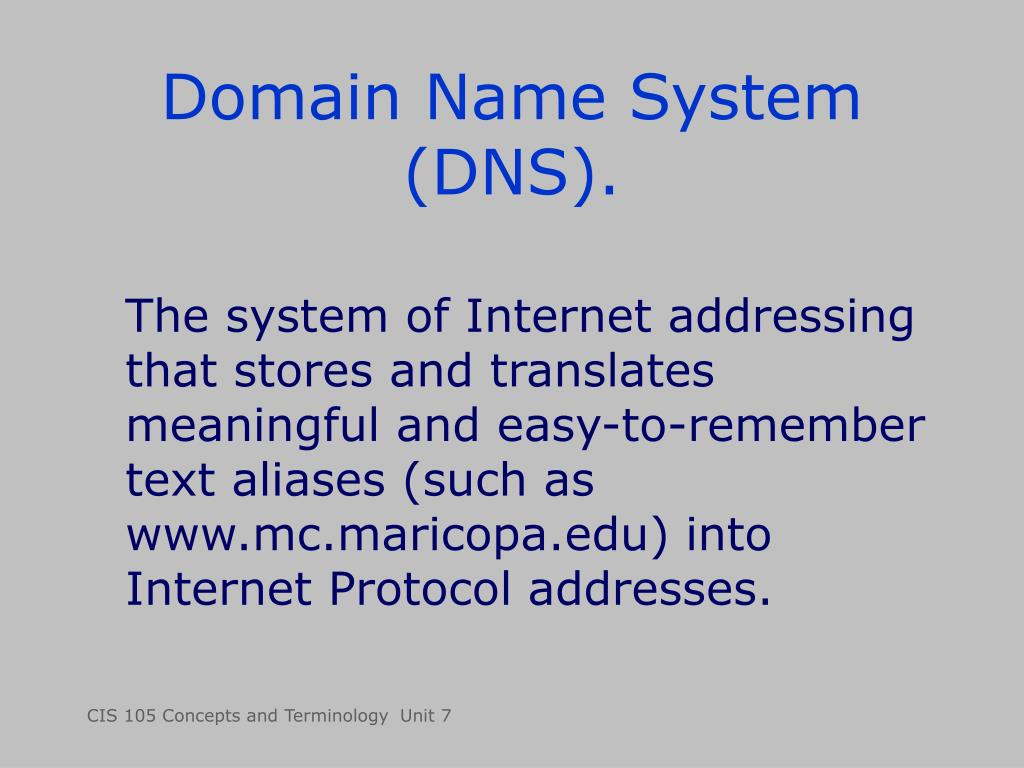 Domain Name System (DNS).
