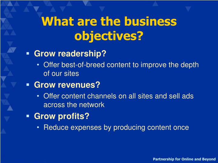 What are the business objectives?