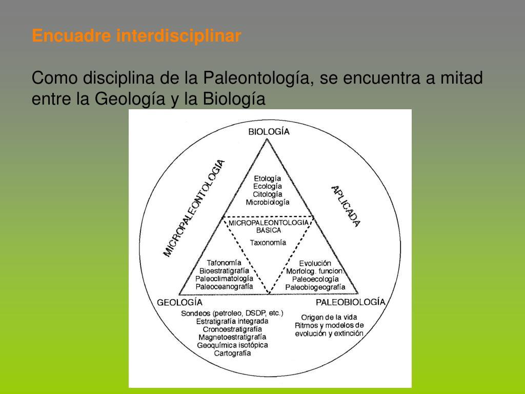 Encuadre interdisciplinar