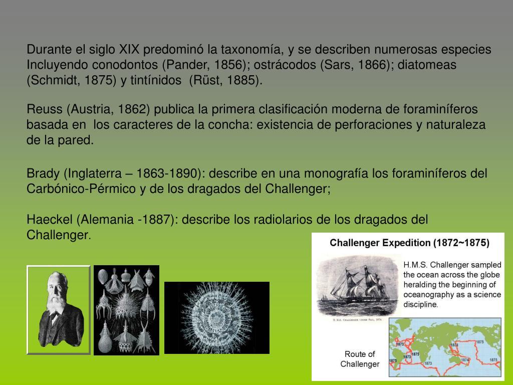 Durante el siglo XIX predomin