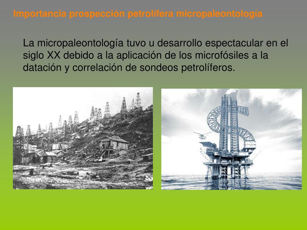 Importancia prospección petrolífera micropaleontología