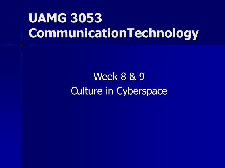 UAMG 3053