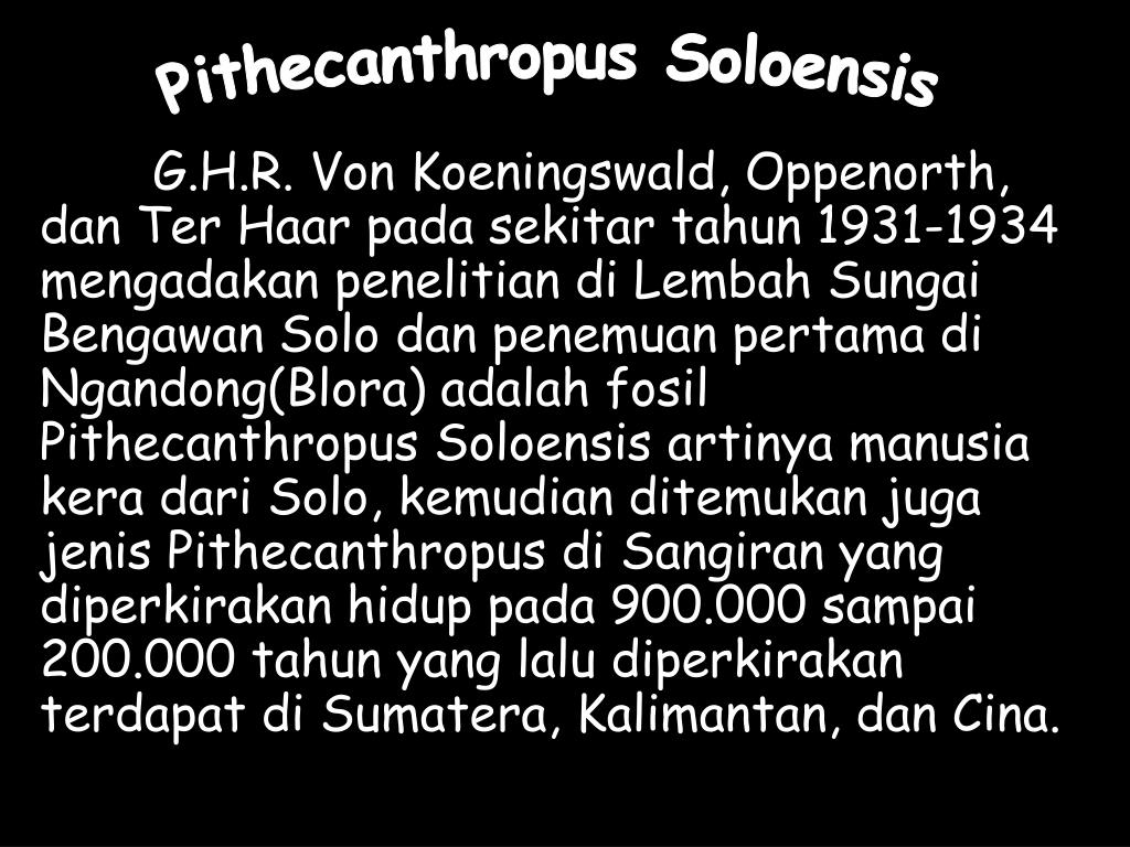 Pithecanthropus Soloensis