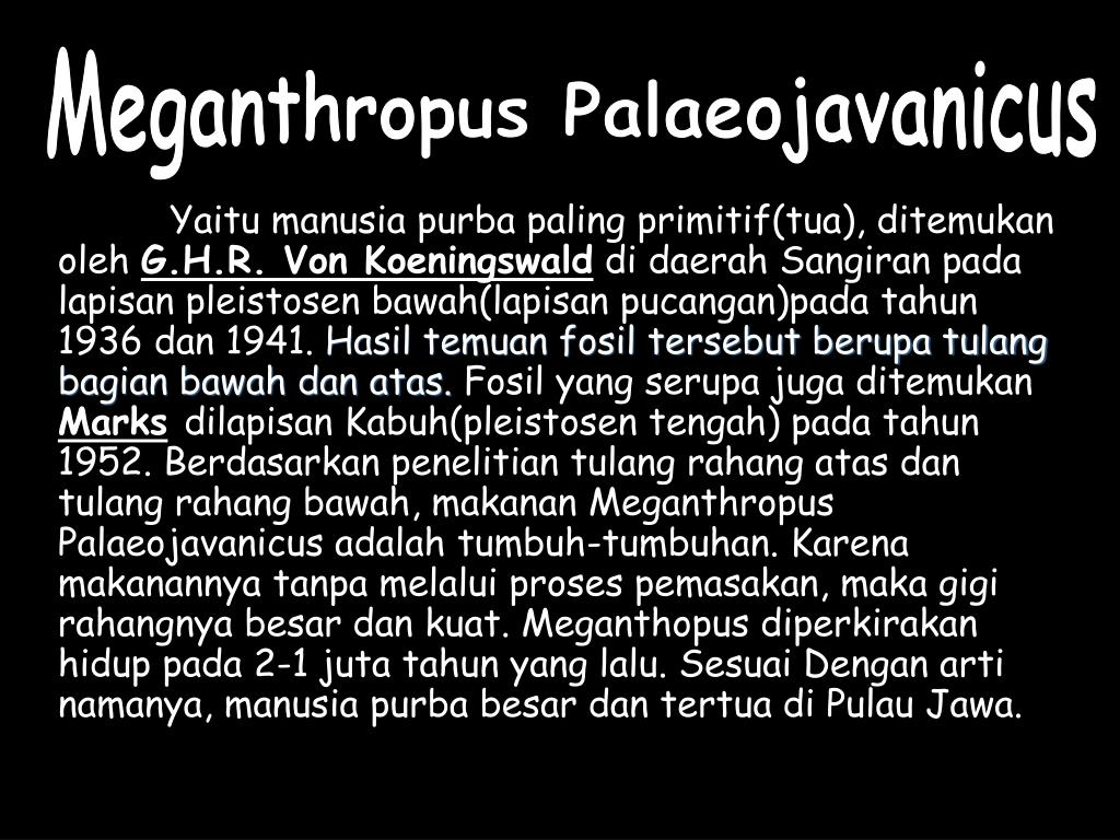 Meganthropus Palaeojavanicus
