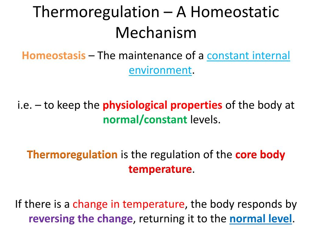 understand how homeostatic mechanisms operate in Homeostasis is a key concept in understanding how our body works it means keeping things constant and comes from two greek words: 'homeo,' meaning 'similar,' and 'stasis,' meaning 'stable'.