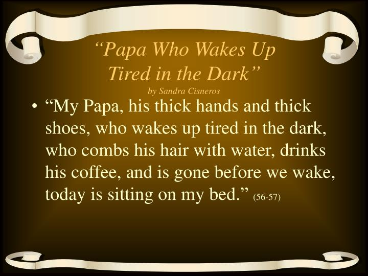 Papa who wakes up tired in the dark by sandra cisneros