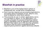 blowfish in practice