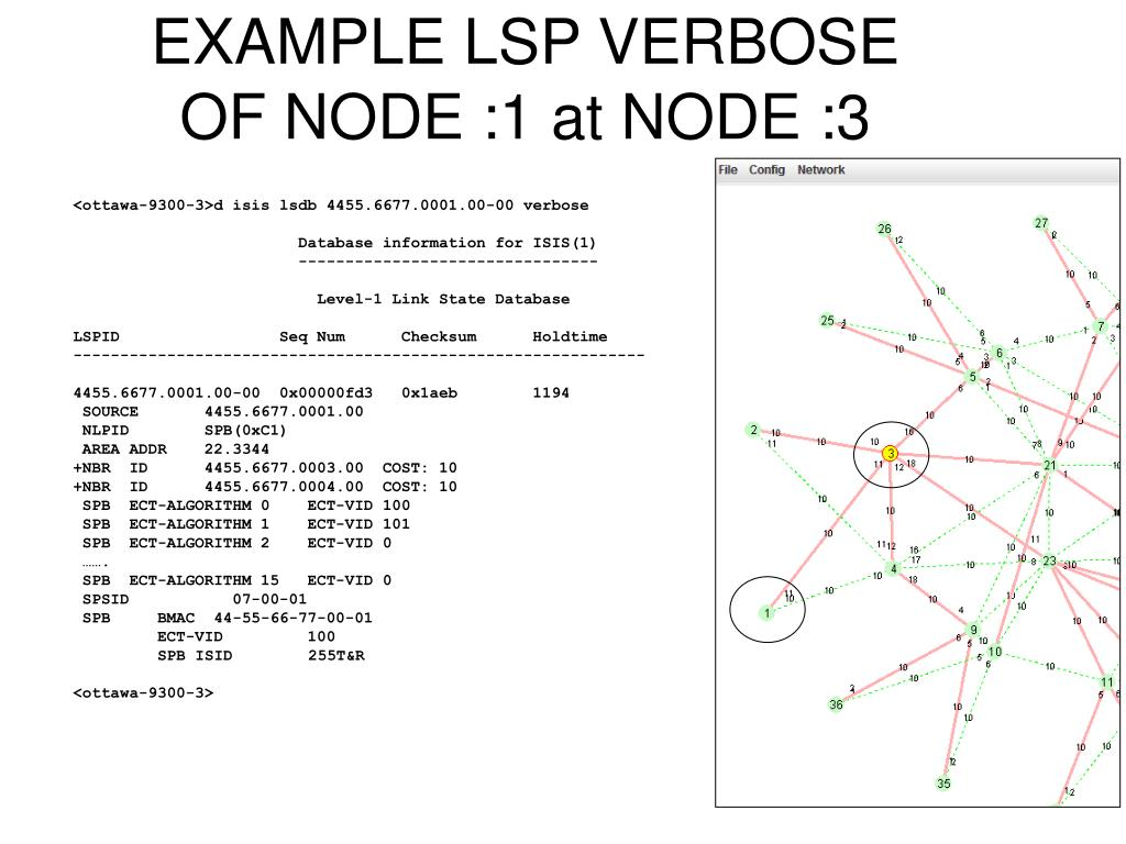 EXAMPLE LSP VERBOSE