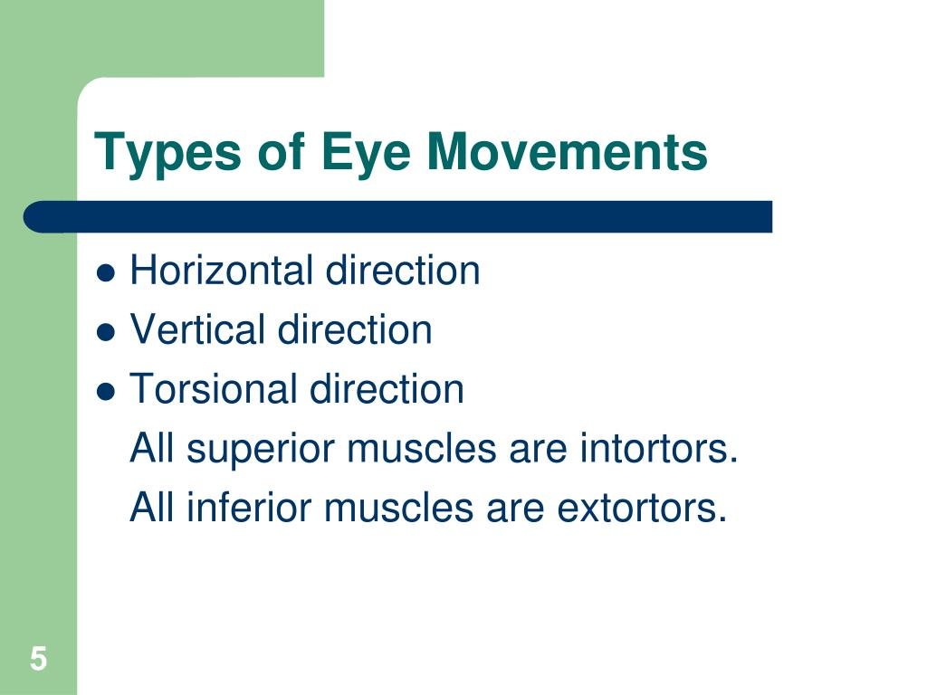 Types of Eye Movements