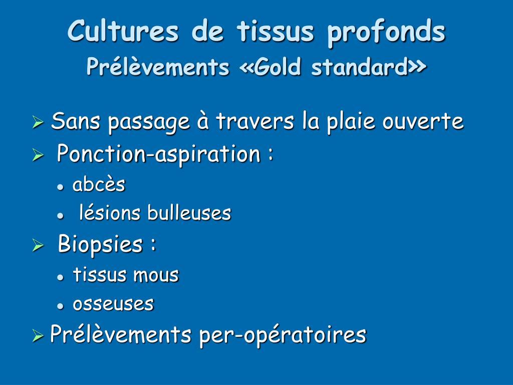 Cultures de tissus profonds