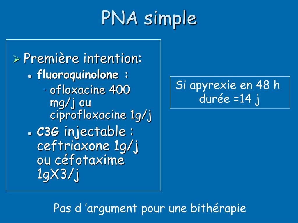 PNA simple