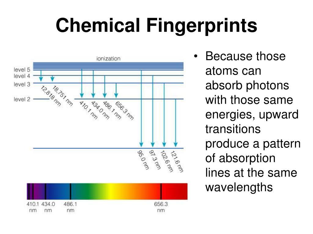 Chemical Fingerprints